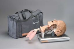 Głowa Ambu Airway Management Trainer 186 002 000